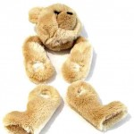 He was a Living Teddy Bear