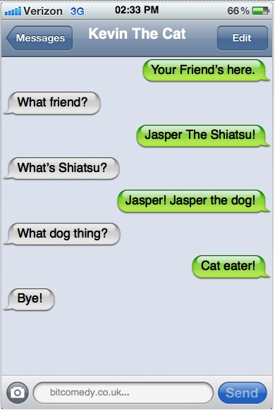 Texts From My Cat: Jasper
